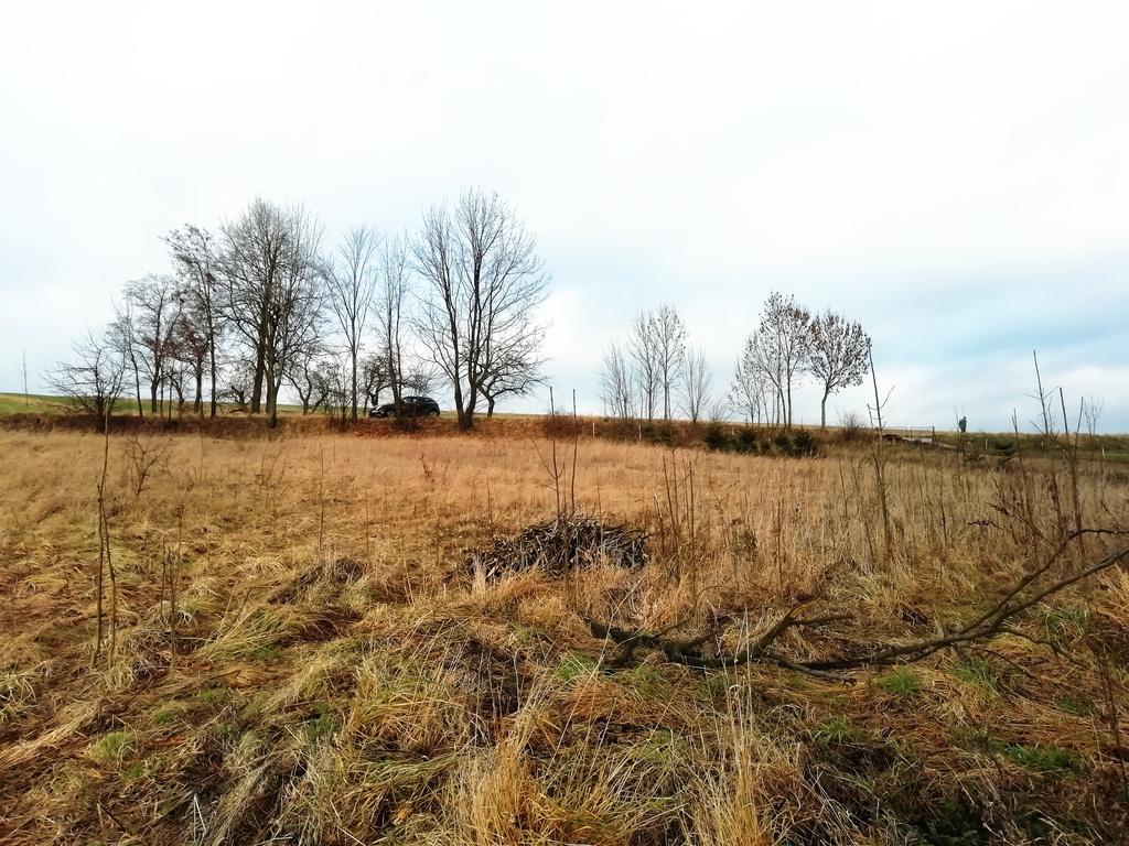 Działka – Sulisławice